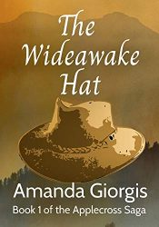 bargain ebooks The Wideawake Hat Historical Fiction by Amanda Giorgis