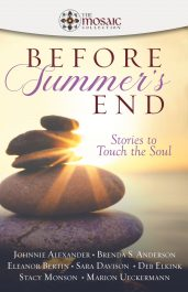 bargain ebooks Before Summer's End Christian Fiction Romance by The Mosaic Collection