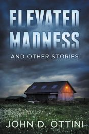 bargain ebooks Elevated Madness and Other Stories Mystery by John D. Ottini