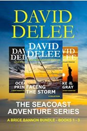 bargain ebooks The Seacoast Adventure Series Book Bundle # 1 Action/Adventure Military Thriller by David DeLee