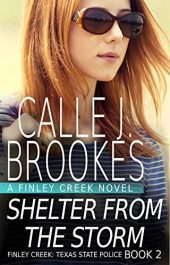bargain ebooks Shelter from the Storm Action/Adventure by Calle J. Brookes