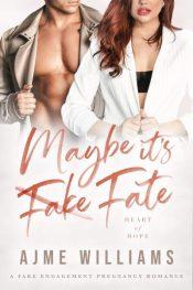 bargain ebooks Maybe It's Fate Romance by Ajme Williams