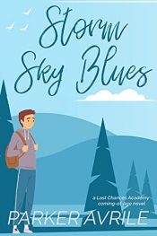 bargain ebooks Storm Sky Blues Coming of Age Gay Fiction by Parker Avrile