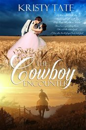 bargain ebooks The Cowboy Encounter Time Travel Romance by Kristy Tate
