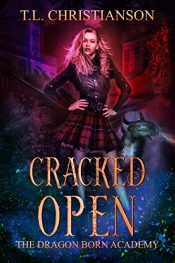 bargain ebooks Cracked Open Young Adult/Teen Fantasy by T.L. Christianson