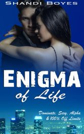 free romance ebooks enigma of life