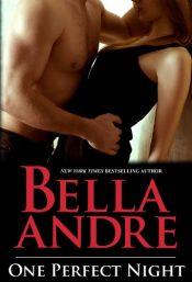 bella andre one perfect night romance
