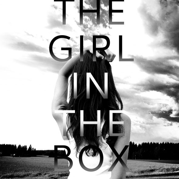 lisa akers the girl in the box thriller