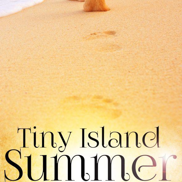 rachelle paige tiny island summer romance