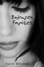 karin mitchell between families