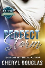 bargain ebooks Perfect Storm Contemporary Romance by Cheryl Douglas