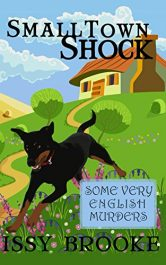 issy brooke small town shock
