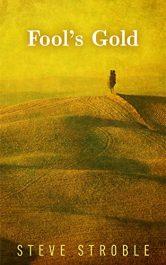 bargain ebooks Fool's Gold Historical Fiction by Steve Stroble