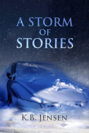 bargain ebooks A Storm of Stories Mystery Thriller by K.B. Jensen
