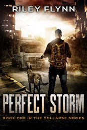 bargain ebooks Perfect Storm Action/Adventure by Riley Flynn