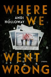 bargain ebooks Where We Went Wrong Mystery Thriller by Andi Holloway