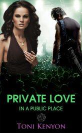 bargain ebooks Private Love in a Public Place Rockstar Romance by Toni Kenyon