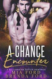 bargain ebooks A Chance Encounter Contemporary Romance by Brenda Ford & Mia Ford
